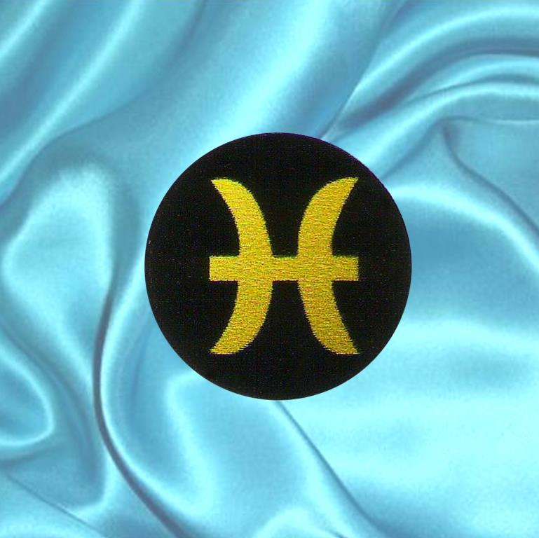 Shungite plaque for cell phone PISCES