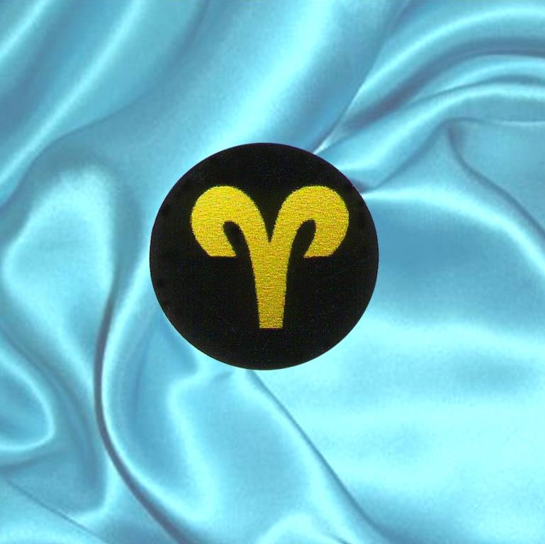 Shungite plaque for cell phone ARIES