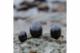 Polished pellet ( 4-7cm) 500g