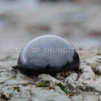 Stone of elite shungite 249 g