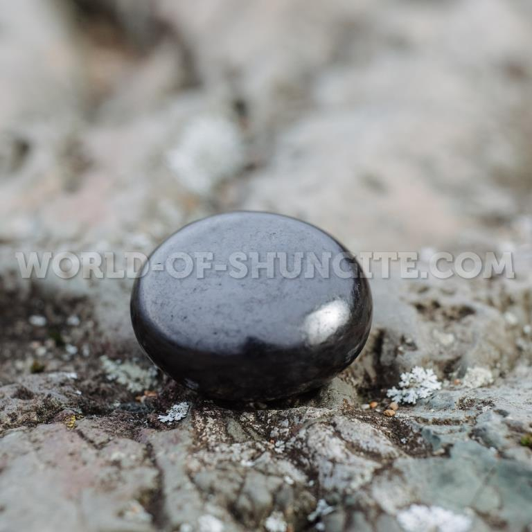 Shungite polished pellet with magnet