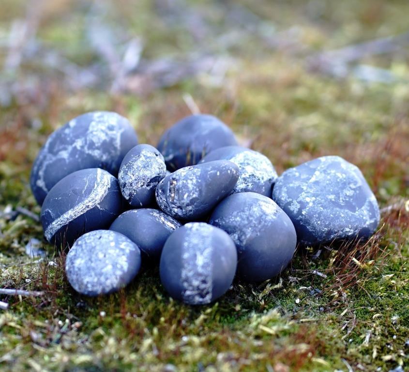 Shungite unpolished pellets (1-3cm) with quartz and pyrite