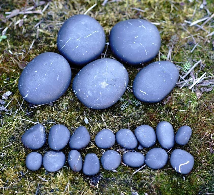 Shungite unpolished pellets for massage (set)